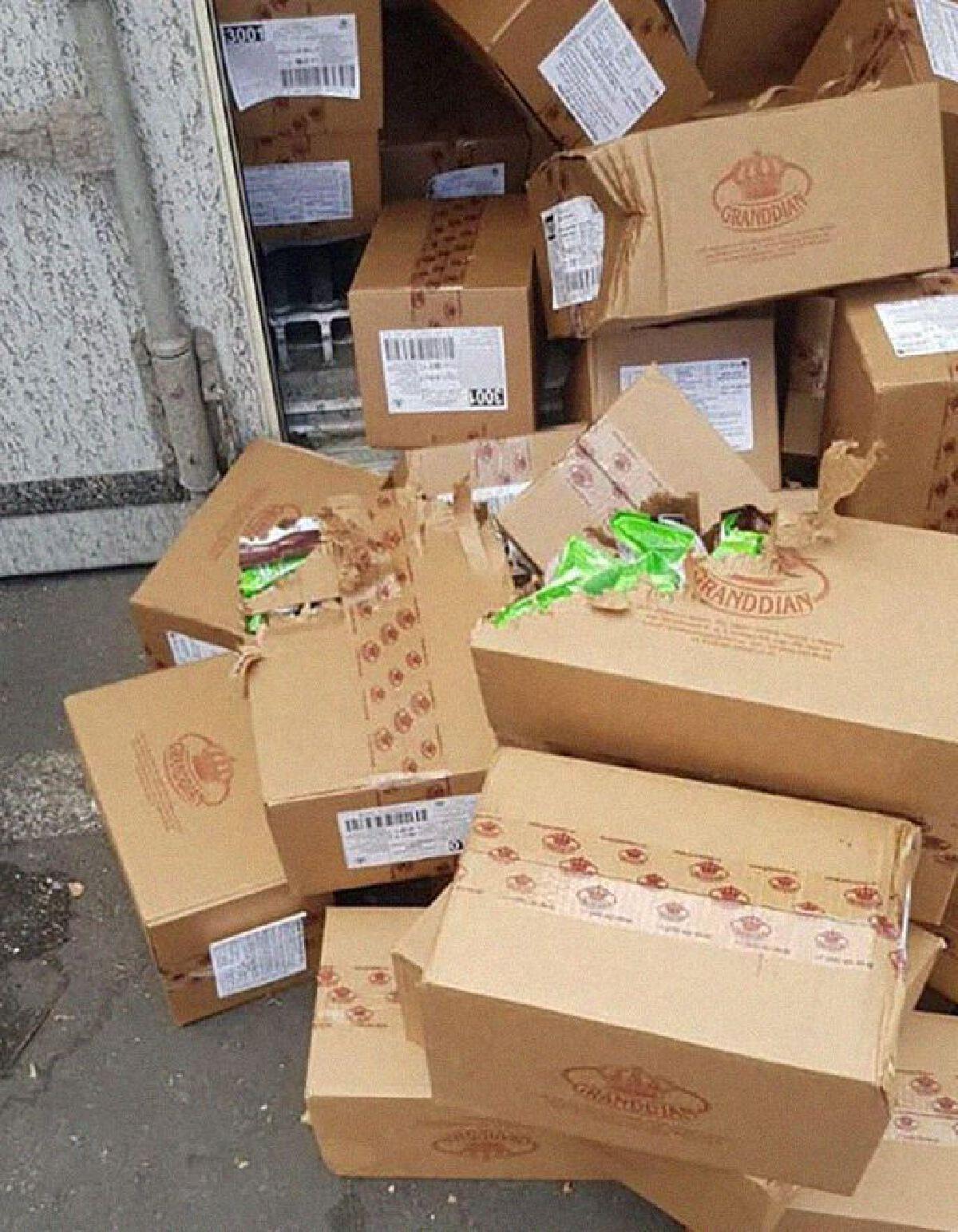 แมวน้อยติดในตู้ขนส่งนาน 3 สัปดาห์ เดินทาง 3000 กม.ข้ามประเทศ