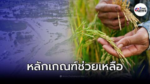 """เช็กเงื่อนไข การเยียวยา """"เกษตรกร"""" ที่ได้รับความเดือดร้อนจากเหตุน้ำท่วม"""